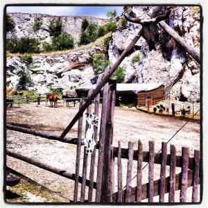 Pony ranch (3)