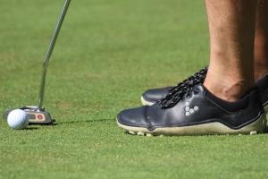 Vivo na golfu (5)