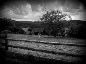 foto-6_dm-posledns-bohyne-irmy-gabrhelove-1-1000x747